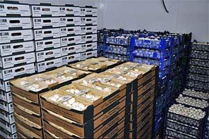 Fertige Ware für die Auslieferung, bei der Vermarktung liegt der Schwerpunkt auf der Region