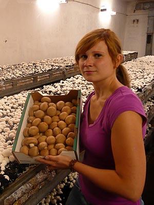 Tochter Annekatrin Kraft mit extra großen braunen Champignons