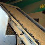 Getoastetes Sojaschrot dient als Aufwertmittel, um die zweite Phase ertragreicher zu machen