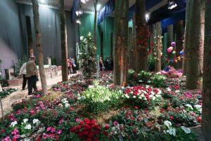 Die Blumenhalle ist einer der Publikumsmagneten der Internationalen Grünen Woche in Berlin.