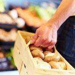 Die Ernte empfindlicher Pilze ist aufwendige Handarbeit, deshalb muss das Produkt einen fairen Preis haben.