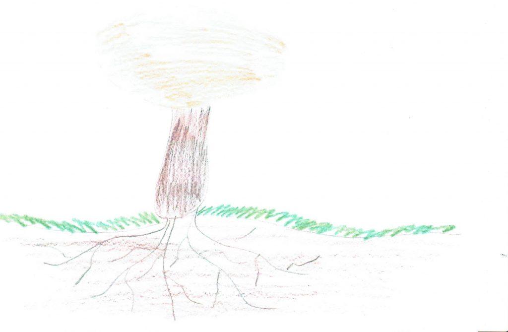 Mycel und Fruchtkörper mit Fuß - alles an der richtigen Stelle, gemalt von Finja aus Glinde.