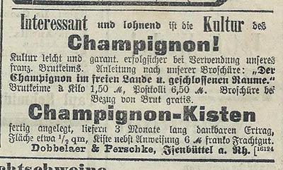 Kisten – keine Erfindung der Neuzeit wie diese Anzeige von 1903 beweist.