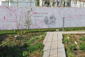 Wie alle Gärten in diesem Bereich ist auch der Pilzgarten von einer Sichtschutzwand, auf der viele weitere Informationen stehen, umgeben.