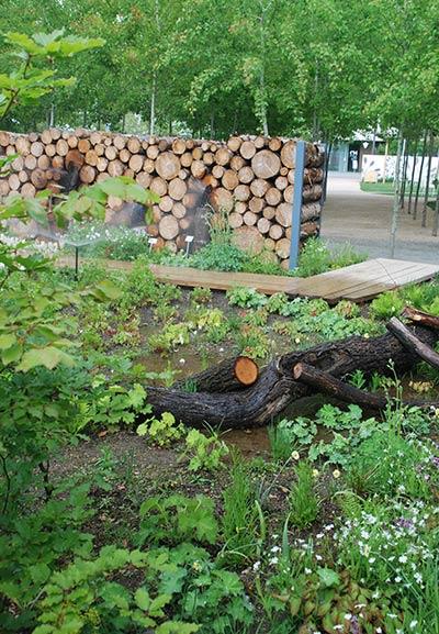 Der Pilzgarten in Heilbronn wurde sehr gut besucht.